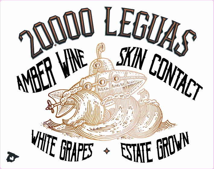 20,000 Leguas Image