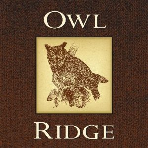 Owl Ridge Sonoma County Cabernet Sauvignon Image